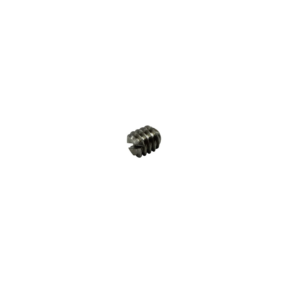 Stainless Steel Set Screw F V7200