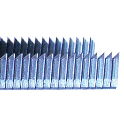 "50 Series 1/2"" Wide Crown Stainless Steel Divergent Point STSSDD5000"